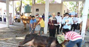 kapolres Bangkalan (berbaju koko putih) memantau proses penyembelihan hewan qurban di lapangan parkir Mapolres Bangkalan (foto:pojoksuramadu)