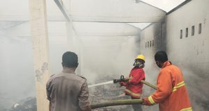Pemadam Kebakaran Saat Berusaha Memadamkan Api